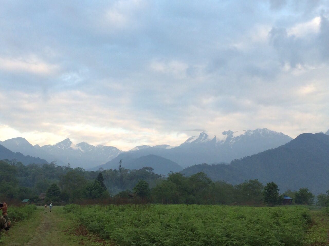 Nang Shwe Oak